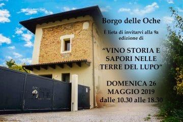 vino_storia_e_sapori