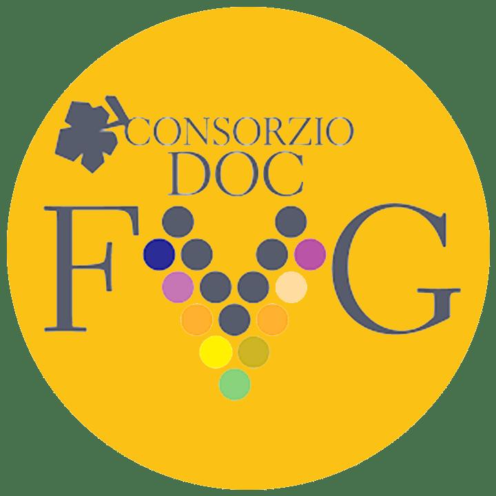 logo_doc_fvg